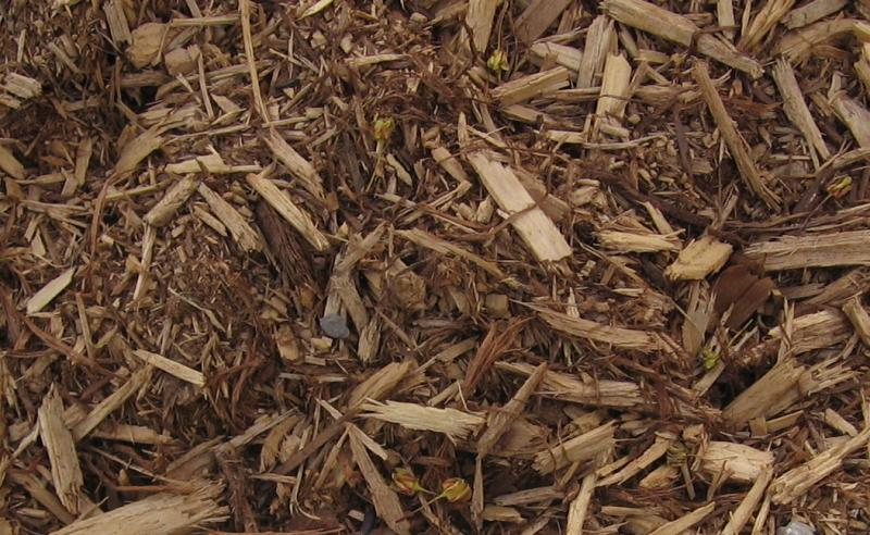 Fito S Landscaping Mulch Samples
